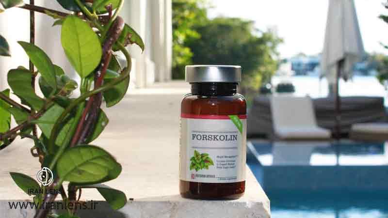 فورسکولین برای درمان گیاهی گلوکوم
